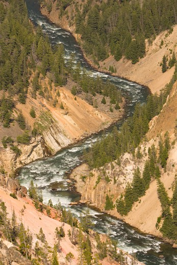 Stock Photo: 4286-55640 WYOMING, USA - Yellowstone River rapids, as it passes throught the Grand Canyon of the Yellowstone, in Yellowstone National Park.