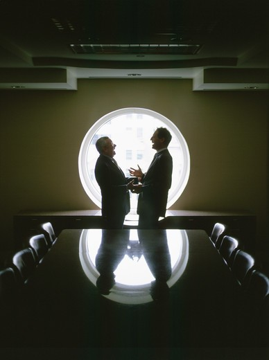 Stock Photo: 4286-56366 Two businessmen talking in a confrerence room