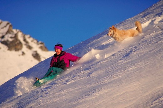 Stock Photo: 4286-57851 A woman sleds down a snowy hill as her dog chaser after her, Hatcher Pass, AK.