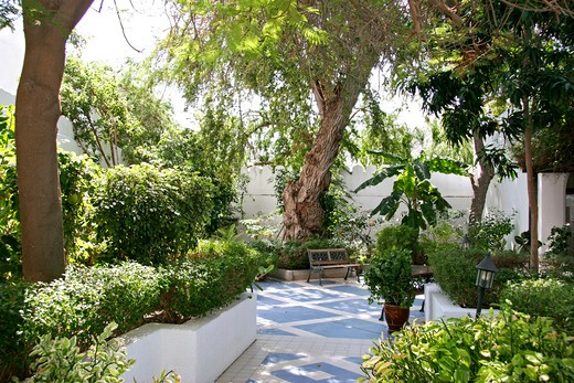 Stock Photo: 4286-62311 Oman French museum in Muscat, garden from French museum in Muscat