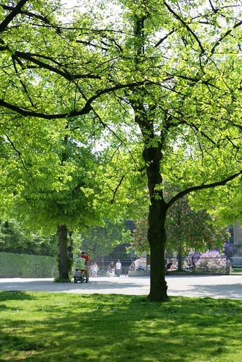 Stock Photo: 4286-69088 Hofgarten Munich, Bavaria, Germany