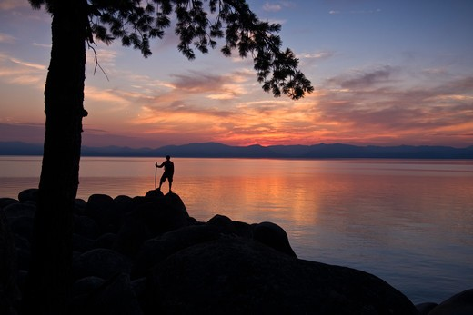 Stock Photo: 4286-72947  A man standing on a rock under a tree on the shore of Lake Tahoe in California at sunset with reflecting water