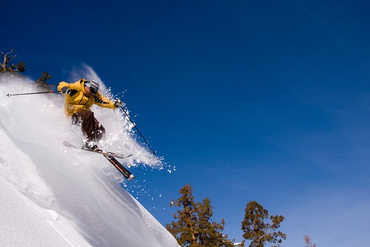 Stock Photo: 4286-73971 A man skiing on a sunny day in fresh powder at Northstar near Lake Tahoe in California
