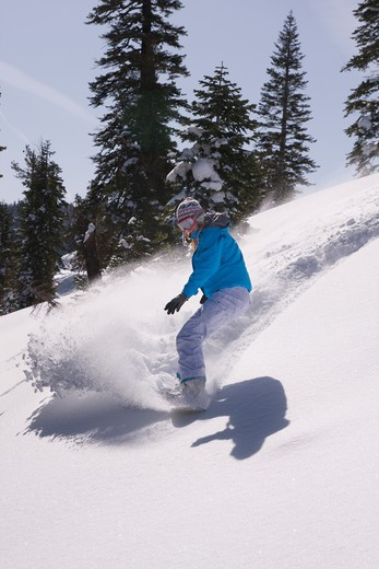 A woman snowboarding on a sunny day in fresh powder snow at Northstar near Lake Tahoe in California : Stock Photo