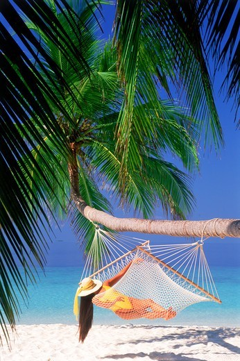 Stock Photo: 4286-74855 Woman with hat and yellow bathing suit relaxing in hammock under green palms over white sandy beach