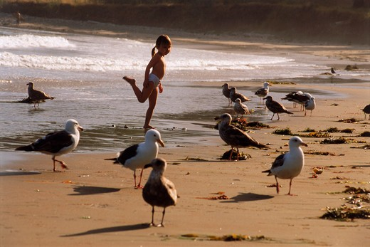 Four year old girl standing like a shorebird in California : Stock Photo