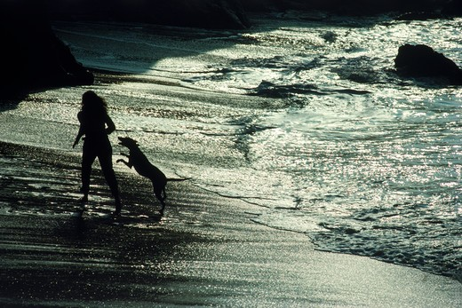 Stock Photo: 4286-75266 Woman running along shore with her dog