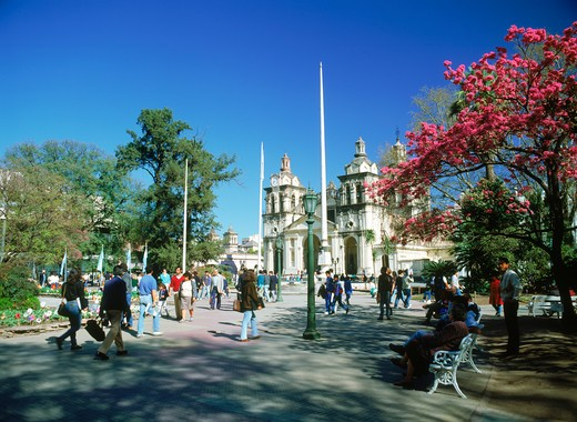 Cordoba Cathedral at Plaza San Mart¡n in Cordoba Argentina : Stock Photo