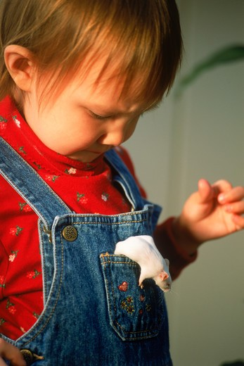 Young girl with pet white mouse in her pocket : Stock Photo