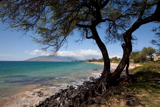 Stock Photo: 4286-87335 Kamaole Beach Park, Kihei, Maui, Hawaii