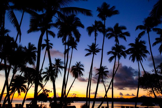 Stock Photo: 4286-89057 Shangri-la Fijian Resort and Spa; Coral Coast; Viti Levu; Fiji;