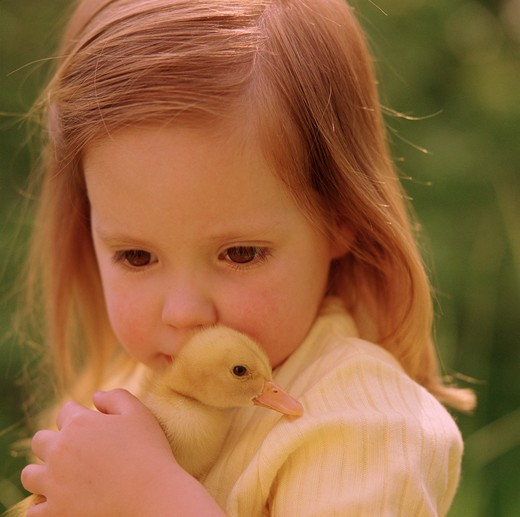 Stock Photo: 4286-89341 Close-up of a young girl with red hair holding a duckling