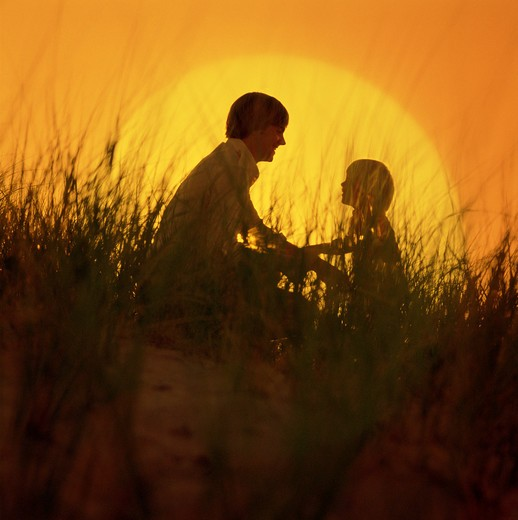 Father and son in the meadow as the sun sets  : Stock Photo