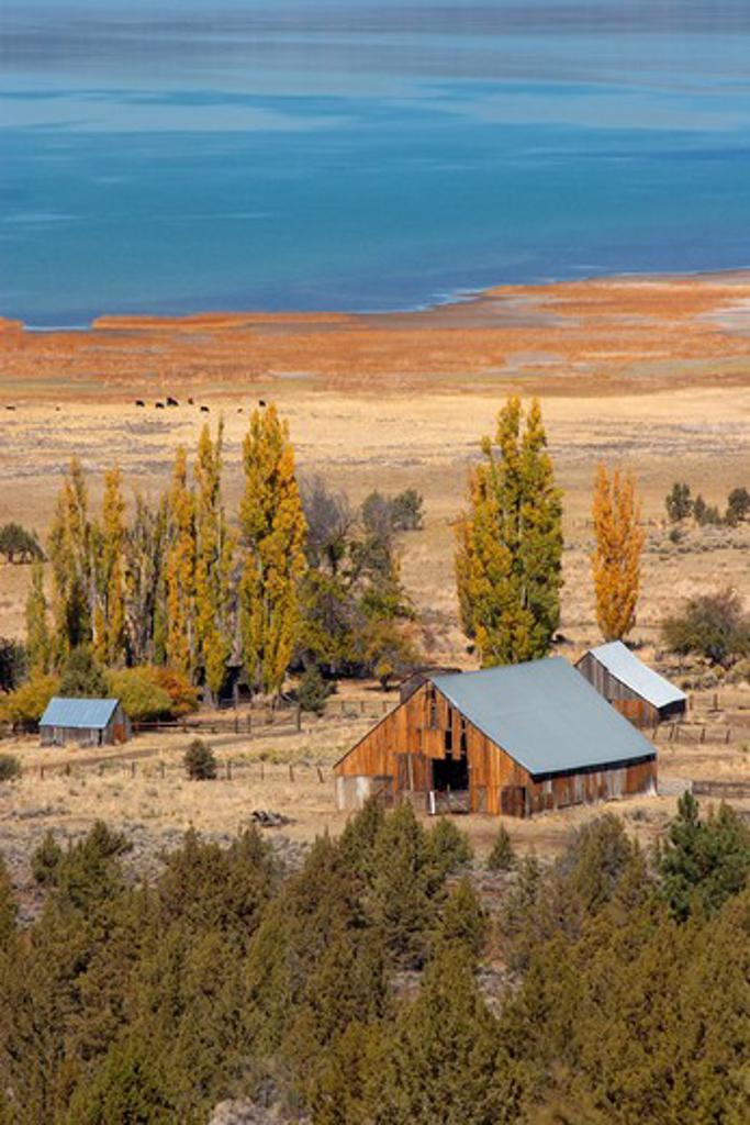 Stock Photo: 4286R-12991 Old farm buildings at Eagle Lake, near Susanville in Northeastern California