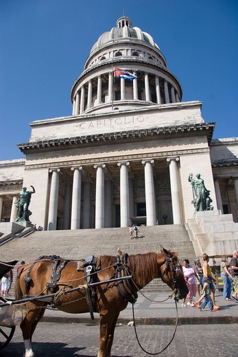 Stock Photo: 4286R-13203 Closeup of the Capitolio Nacional in Old Havana with Horse pulling carriage in front