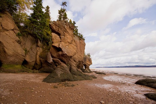 Stock Photo: 4286R-14134 Flower Pot rocks including ET Rock and Motherinlaw, Hopewell Rocks, Bay of Fundy, New Brunswick, Canada