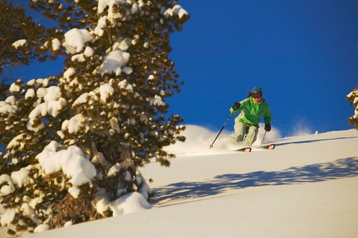 Stock Photo: 4286R-14538 A young woman skiing powder snow in Lake Tahoe, CA.