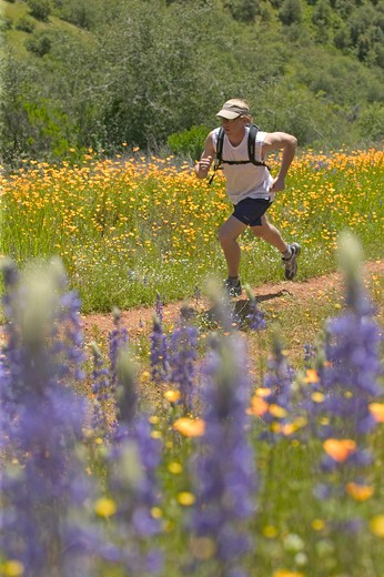 A man running in spring on a trail lined with flowers near Auburn, CA. : Stock Photo