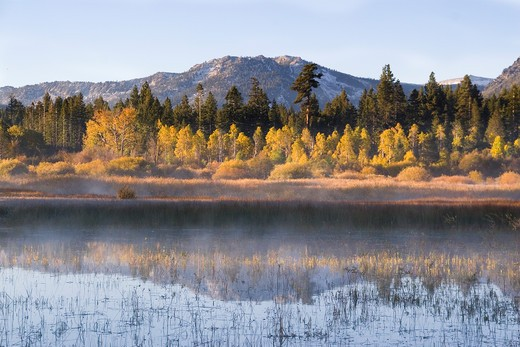Stock Photo: 4286R-15181 A mountain and yellow aspen trees reflecting in Lake Tahoe in California