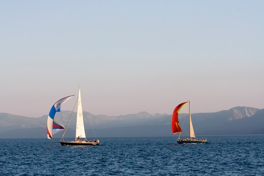 Sailboats on Lake Tahoe during a race : Stock Photo