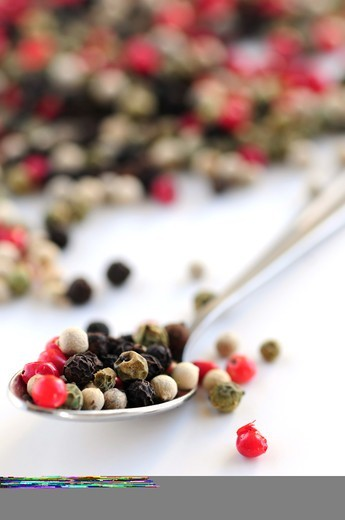Stock Photo: 4286R-2920 Mixed assorted peppercorns on white background macro