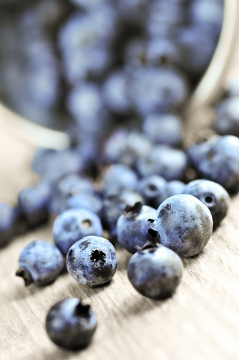Stock Photo: 4286R-3521 Fresh blueberries spilling out of a pail close up