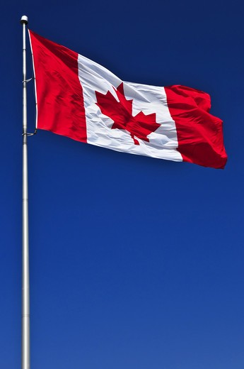 Flag of Canada waving in the wind on blue sky background : Stock Photo