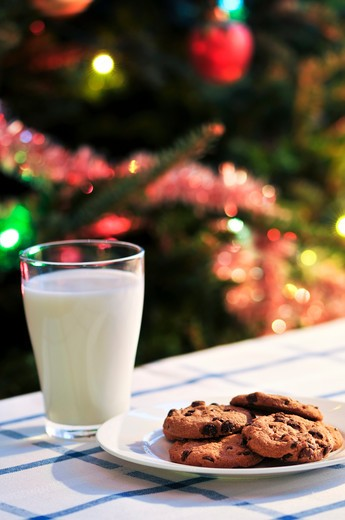 Stock Photo: 4286R-4225 Plate of cookies and glass of milk near Christmas tree