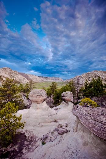 Stock Photo: 4288-1621 Spring, Gist Bottom, Upper Missouri River Breaks National Monument, Montana, USA.