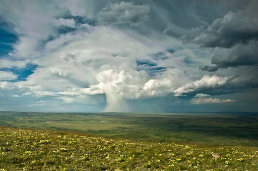Thunderhead raining on prairie, Montana, USA. : Stock Photo