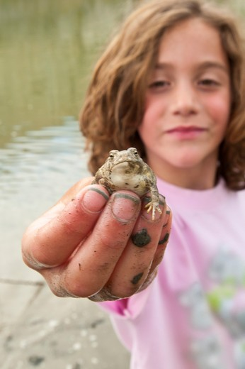 Girl with muddy hands holding small frog. : Stock Photo