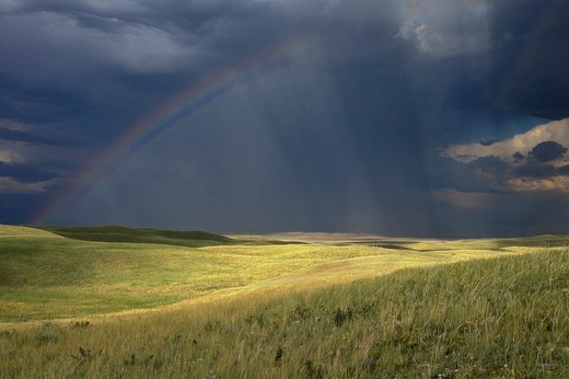 Stock Photo: 4288-1706 Rain and rainbow over prairie, Montana, USA.