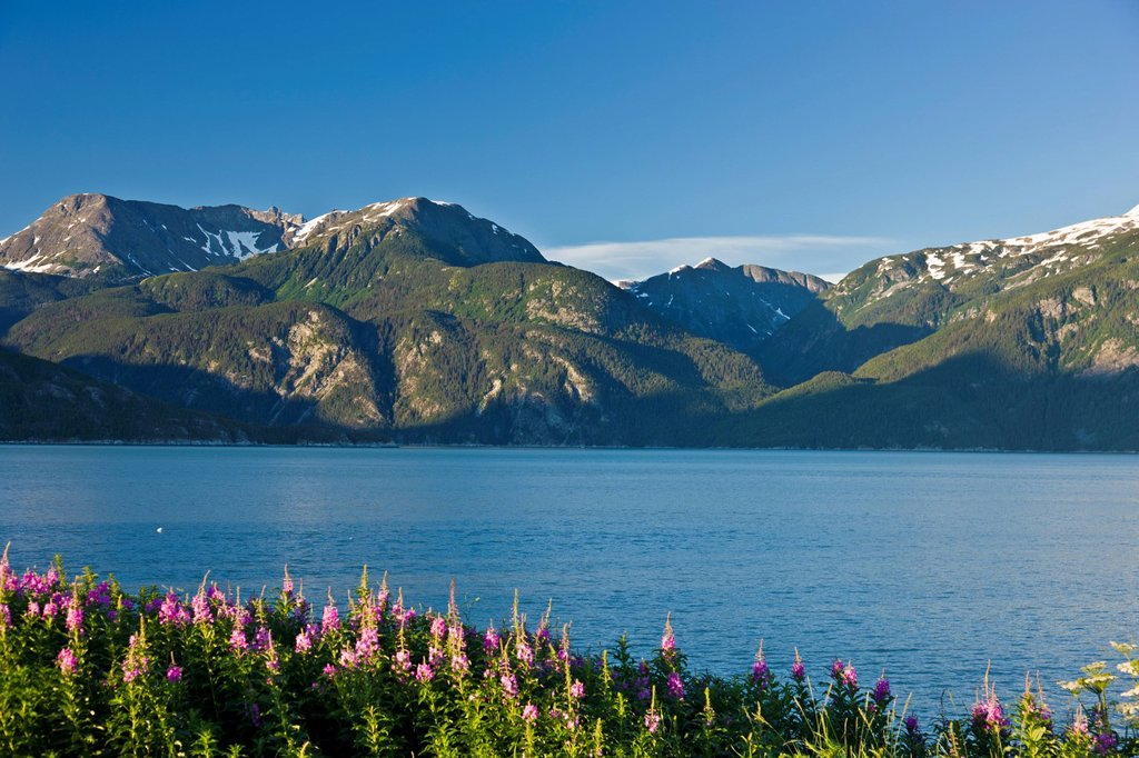Stock Photo: 4289-10230 View across Lutak Inlet towards the Coastal Mountain Range and Mt. Villard, Haines, Southeast Alaska, Summer