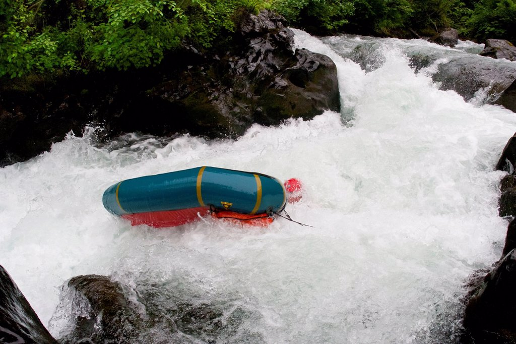 Man flips over and swimming in whitewater while packrafting on the lower Ship Creek, near Anchorage, Southcentral Alaska, Summer : Stock Photo