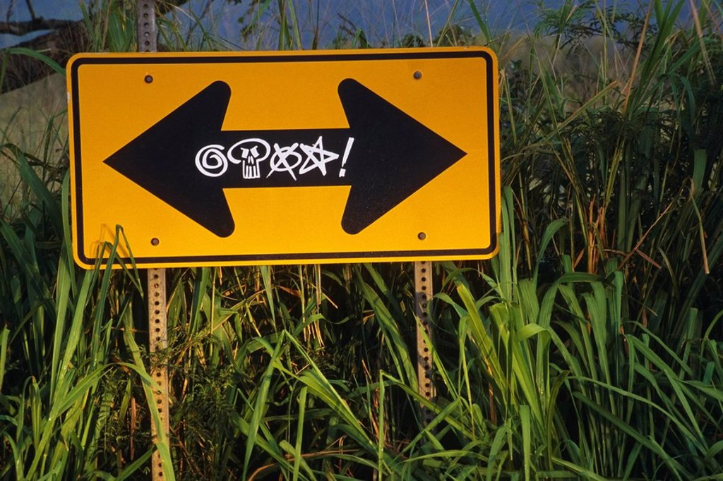 Grafitti marked direction road sign in tall grass USA Summer : Stock Photo