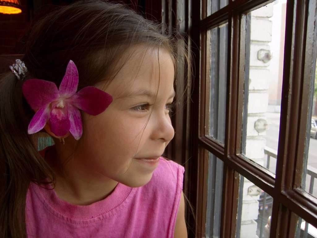 Stock Photo: 4289-13183 Close up of young girl with flower behind ear gazing out a window Boise, ID