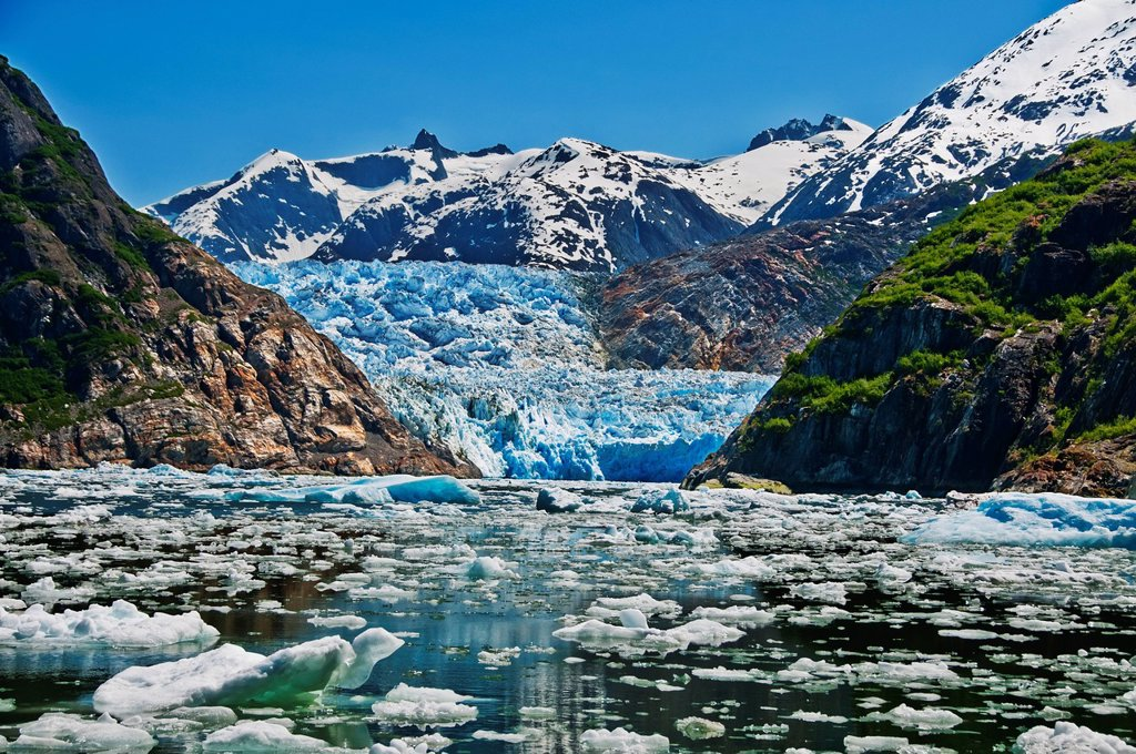 Summer ice bergs float in front of South Sawyer Glacier in Tracy Arm, Tracy Arm_Fords Terror Wilderness, Souhteast Alaska : Stock Photo