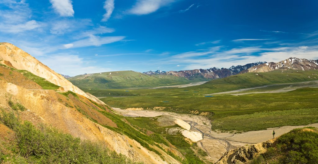 Stock Photo: 4289-13327 Scenic view of a hiker on Polychrome Pass, Denali National Park & Preserve, Interior Alaska, Summer