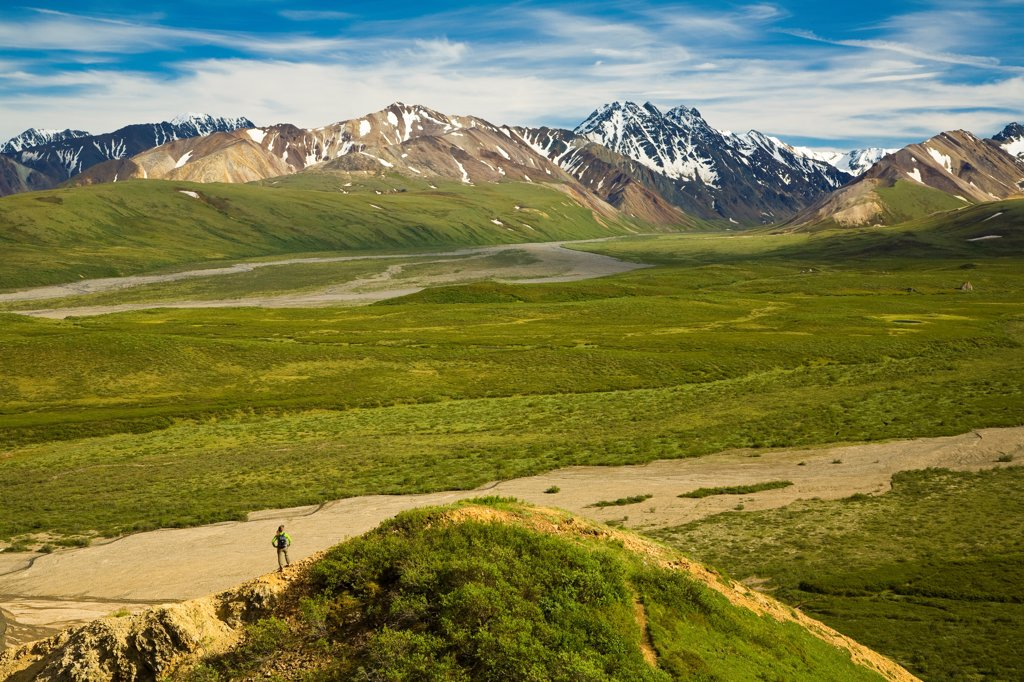 Hiker views Alaska Range and East Fork Toklat Valley from Polychrome Pass, Denali National Park & Preserve, Interior Alaska : Stock Photo