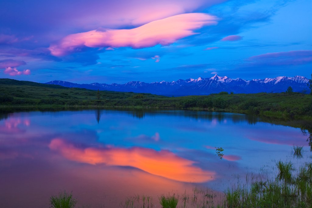 View of lenticular clouds on north side of Alaska Range reflected in a tundra pond at daybreak, Denali National Park & Preserve, Interior Alaska, Summer : Stock Photo