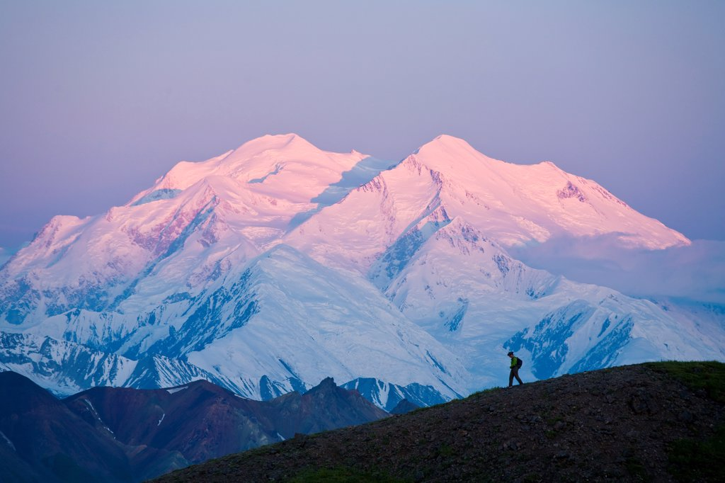 Scenic view of Mt. Mckinley at dawn with the silhouette of a hiker in the foreground at Grassy Pass, Denali National Park & Preserve, Interior Alaska, Summer : Stock Photo