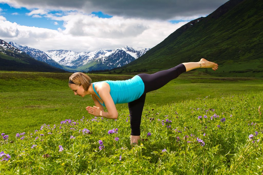 Woman practicing yoga in a mountain meadow of wild geraniums, Turnagain Pass, Chugach National Forest, Southcentral Alaska, Summer : Stock Photo