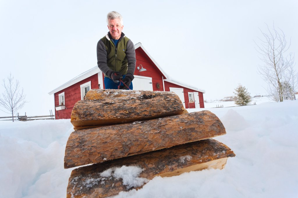 Man hauls cut wood with a sled to a red barn, Stanley, Idaho, Winter : Stock Photo