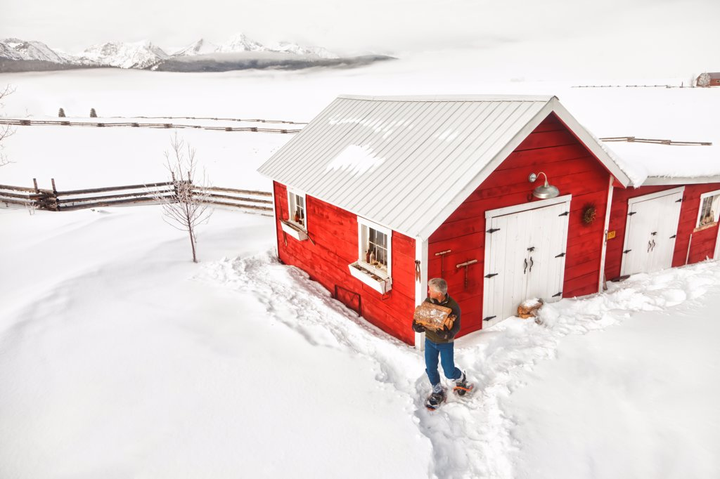 Man carries an armful of firewood on snowshoes from a red barn, Stanley, Idaho, Winter, HDR : Stock Photo