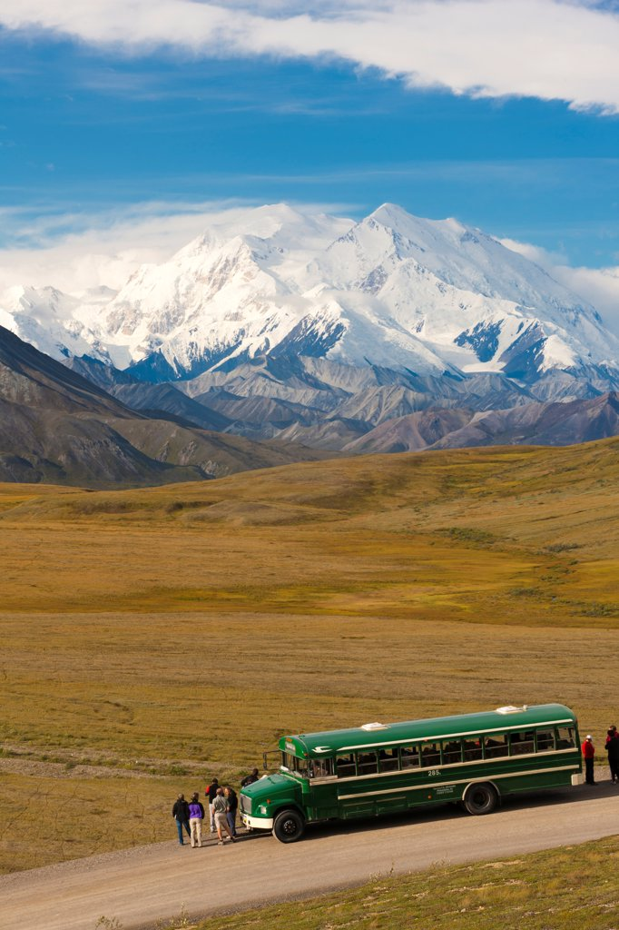 Park shuttle bus passengers looking at Mt. McKinley from Stony Hill, Denali National Park & Preserve, Interior Alaska, Summer : Stock Photo
