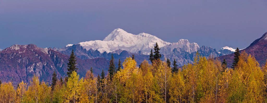 Panorama scenic of Mt. McKinley as seen from the Veterans Memorial in Denali State Park, Southcentral Alaska, Autumn : Stock Photo