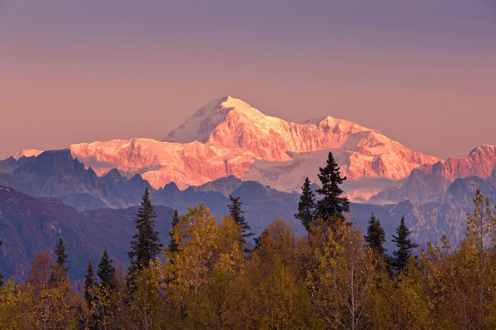 Panorama scenic of sunrise on Mt. McKinley and the Alaska Range as seen from the Veterans Memorial in Denali State Park, Southcentral Alaska, Autumn : Stock Photo