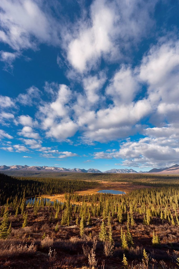 Scenic view of the foothills of the Alaska Range from the Denali Highway, Southcentral Alaska, Autumn : Stock Photo