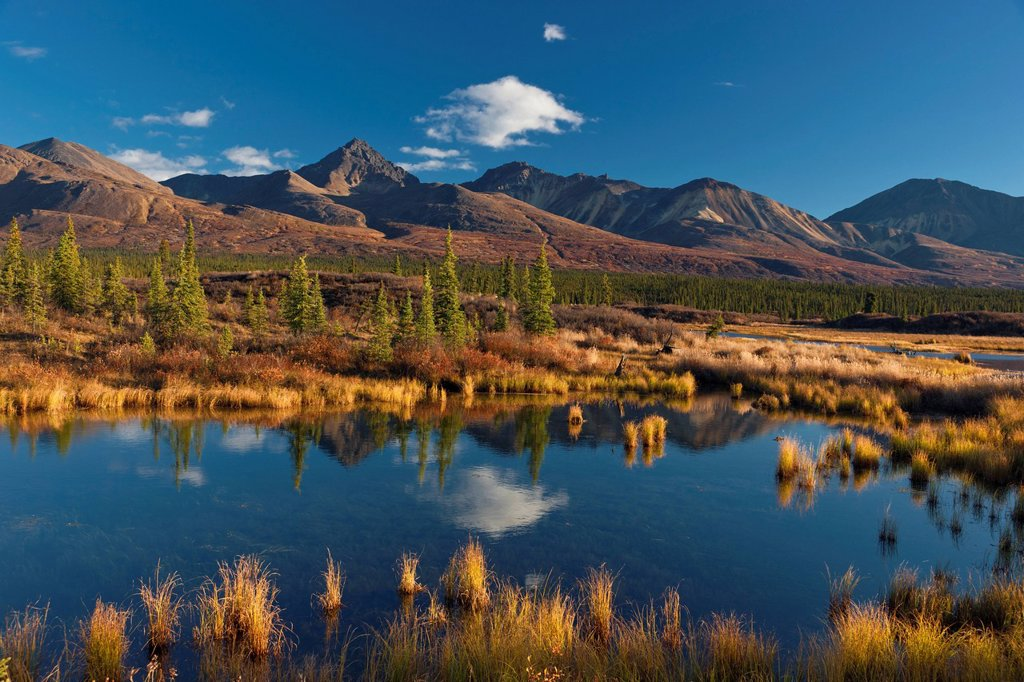 Stock Photo: 4289-13688 Scenic mountain landscape with a pond in the foreground seen from the Denali Highway, Southcentral Alaska, Autumn