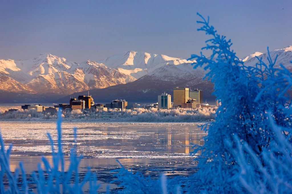 Stock Photo: 4289-13697 Hoarfrost covers trees along the Anchorage skyline with an icy Cook Inlet in the foreground on a cold mid winter day, Southcentral Alaska